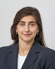 Anca-Elena Ursu