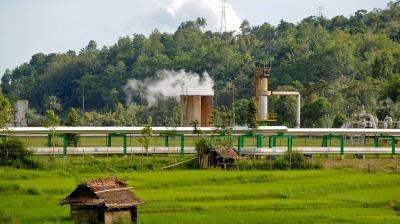 Energy security and green growth in Indonesia
