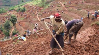 Verslechtering bodemvruchtbaarheid als onderschatte veiligheidsfactor