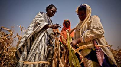 The Sahel Programme
