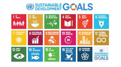 SDG Partnerships with the Private Sector