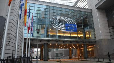 The European Parliament after the elections