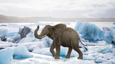 The Arctic Elephant: Europe & geopolitics of the high north