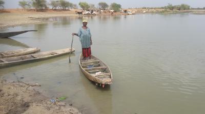 Improving decentralised natural resource management in the Sahel